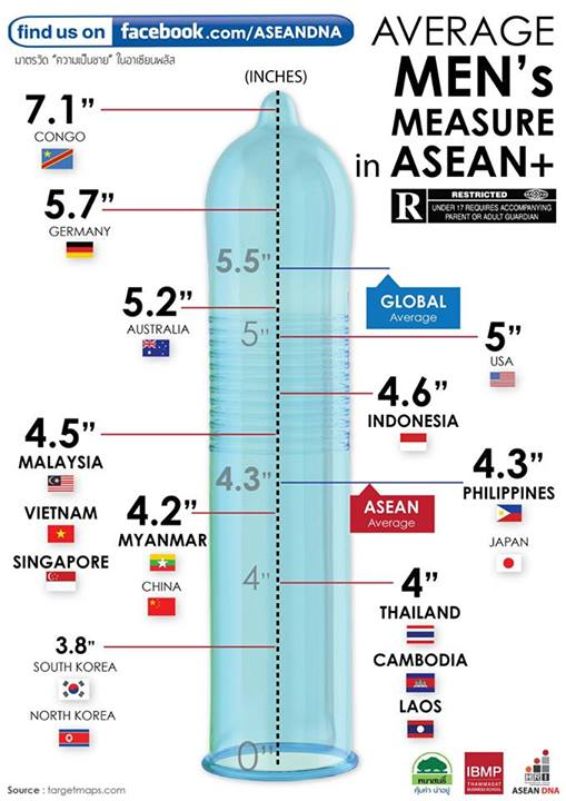 Asian Size, thai men size